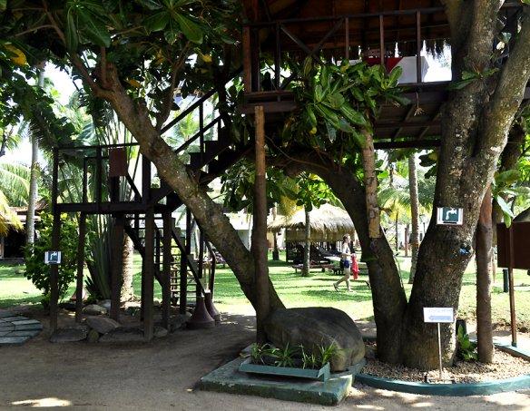 Тур в отель Eden Resort 5* 2
