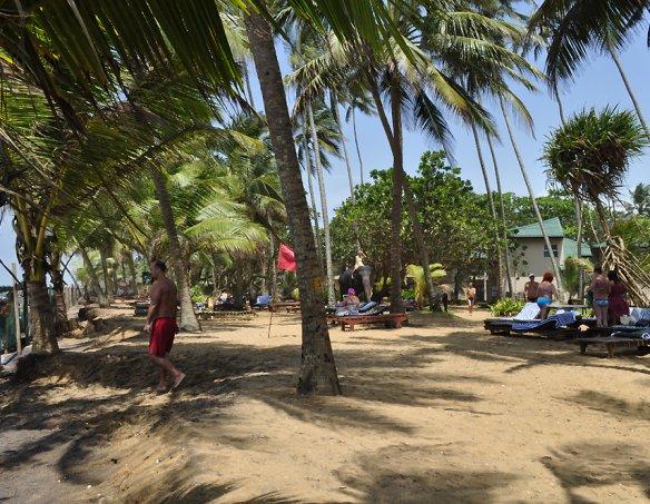 Тур в отель Villa Ocean View 3*+ 16