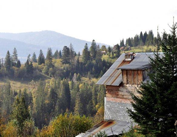 Тур в пансионат Альпийский двор 29