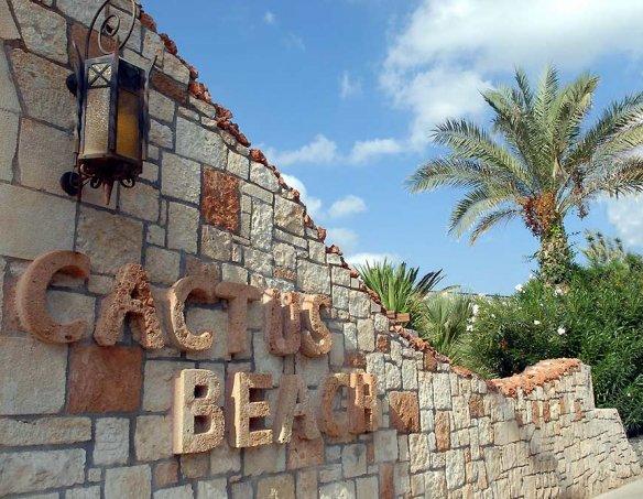Тур в отель Cactus Beach 4* 15