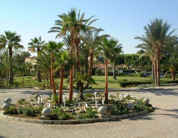 Тур в отель Palm Beach 4*  7