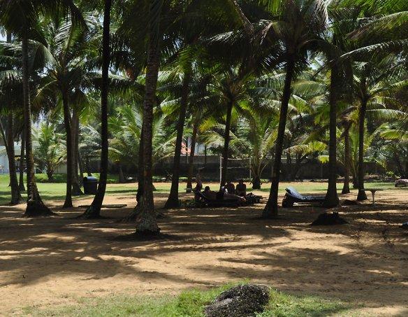 Тур в отель Villa Ocean View 3*+ 17