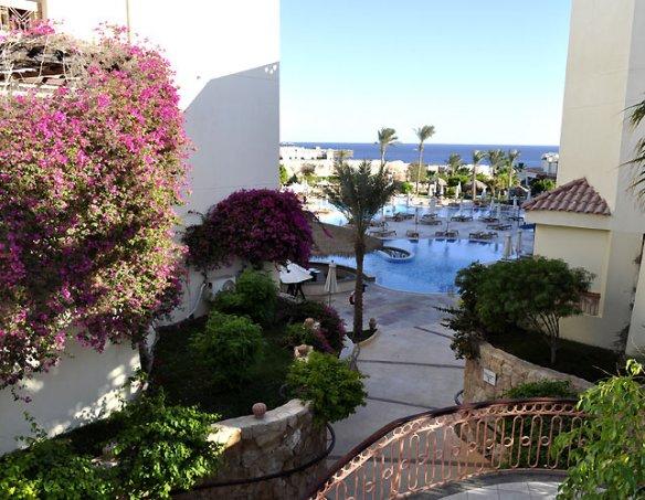 Тур в отель Hilton Sharks Bay 4* 37
