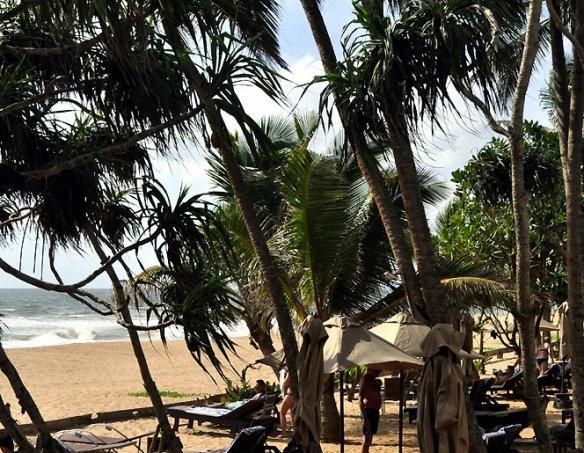 Тур в отель Pandanus Beach 4*+ 22
