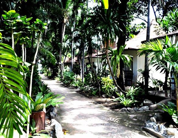 Тур в отель Chaweng Buri 3*  14