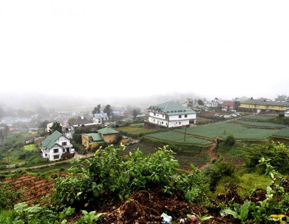 Йога-тур в Шри-Ланку 2018 14