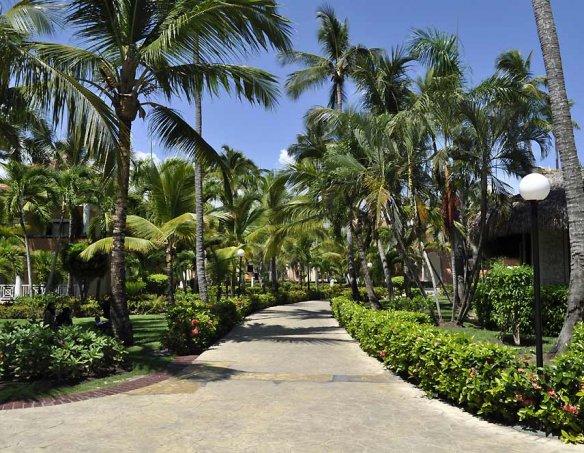 Тур в отель Luxury Bahia Principe Ambar 5* 11