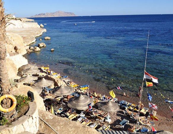 Тур в отель Hilton Sharks Bay 4* 26