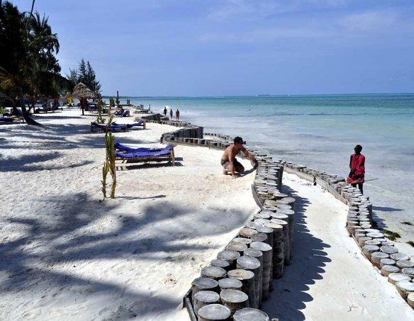 Тур в отель Dream of Zanzibar 5* 6