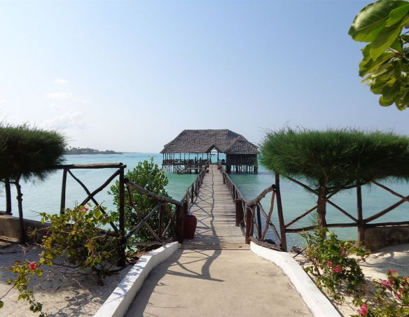 Тур в отель Reef & Beach 3* 1