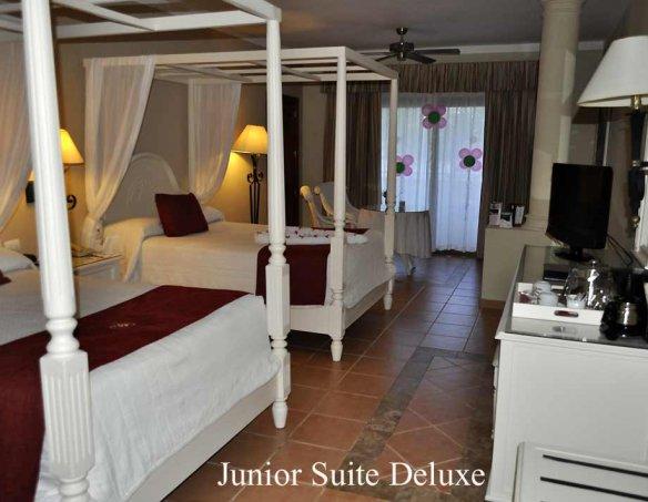 Тур в отель Luxury Bahia Principe Ambar 5* 4