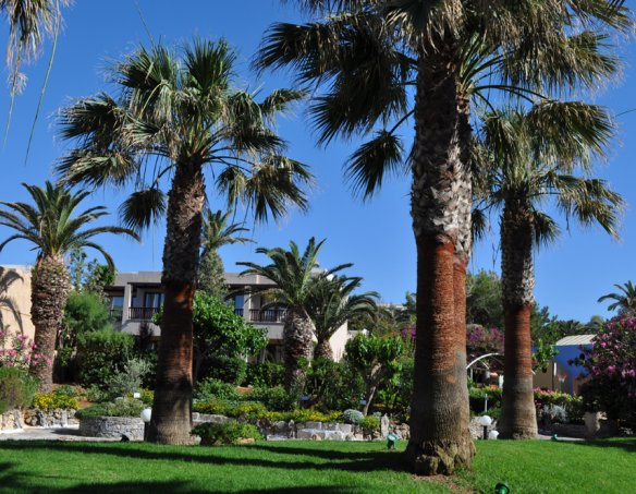 Тур в отель Aquila Rithymna Beach 5* 1