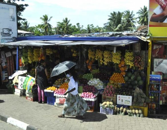 Шри-Ланка 8