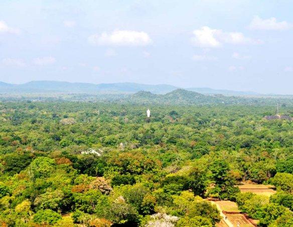 Шри-Ланка 17