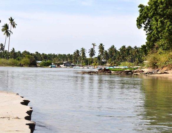 Шри-Ланка 6