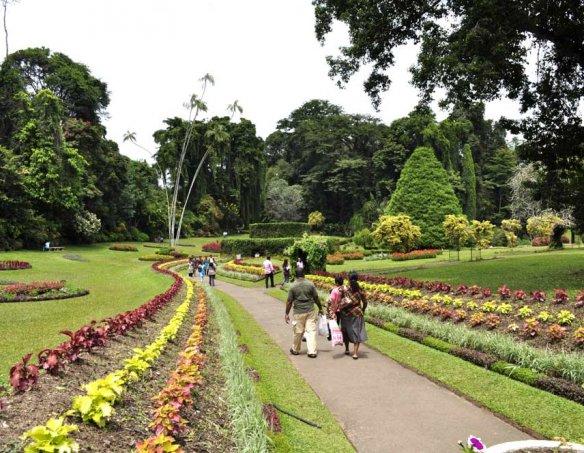 Шри-Ланка 44