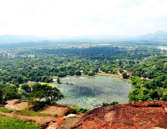 Шри-Ланка 14