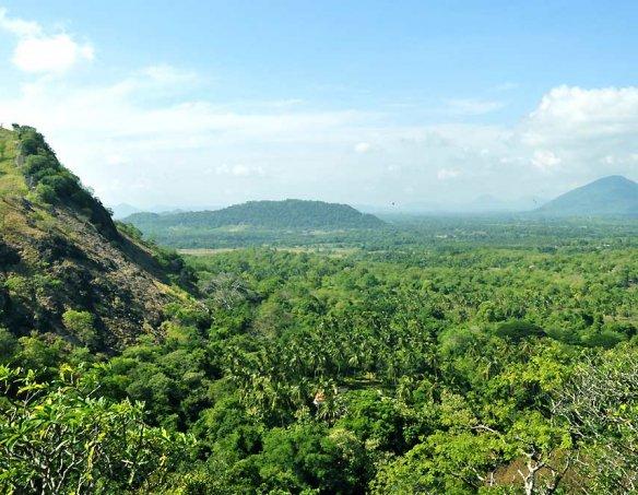 Шри-Ланка 54