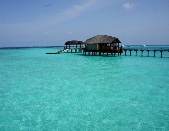 Мальдивы  17